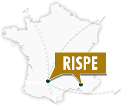 Rispe International map